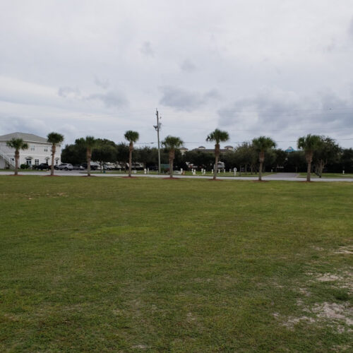 Large Field For Recreation And Pets